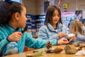 Ecology in Classrooms & Outdoors